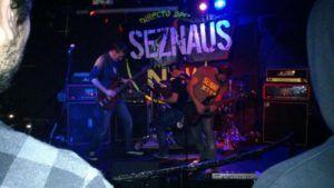 Seznaus