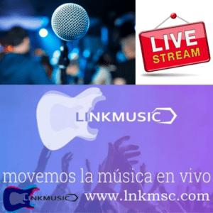Cuestionario de Linkmusic